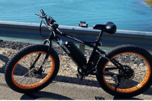 ECOTRIC Electric Powerful Bicycle