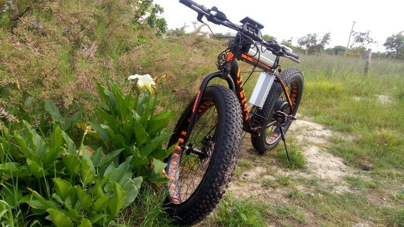 Fat Tire Electric Bikes